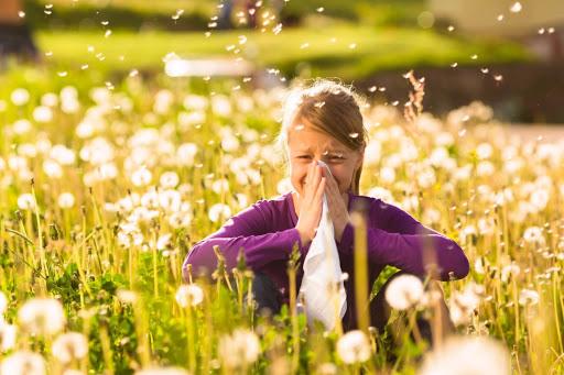 Dentre os fatores desencadeantes mais comuns temos pó, mofos, polens, ervas, árvores e animais.